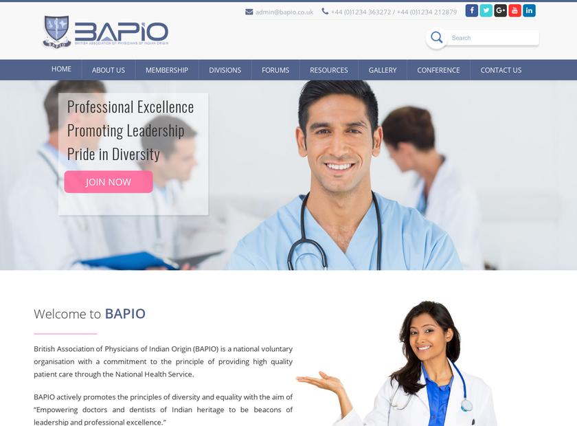 BAPIO Ltd homepage screenshot