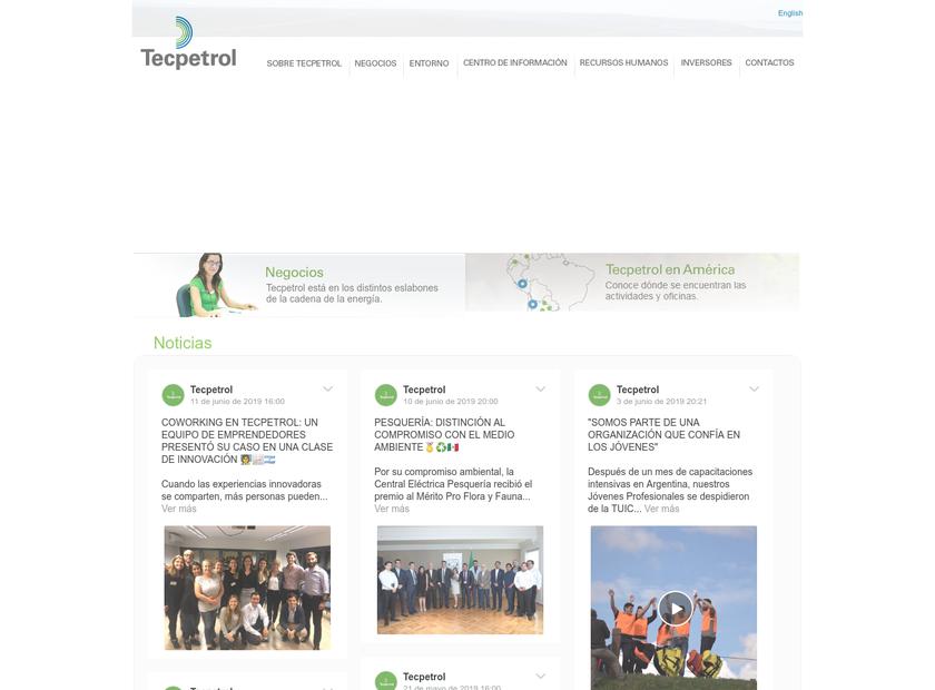 Tecpetrol Corporation homepage screenshot