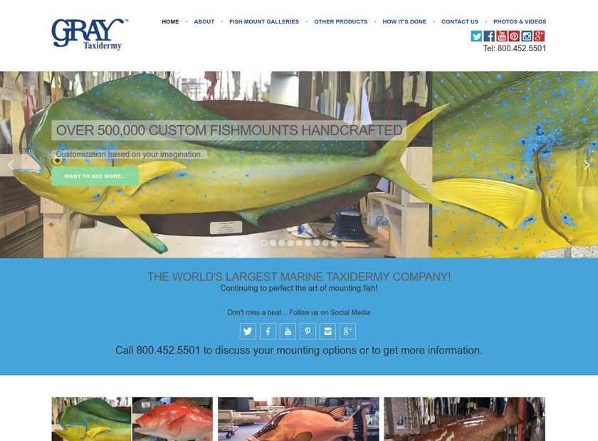 Gray Taxidermy Inc homepage screenshot