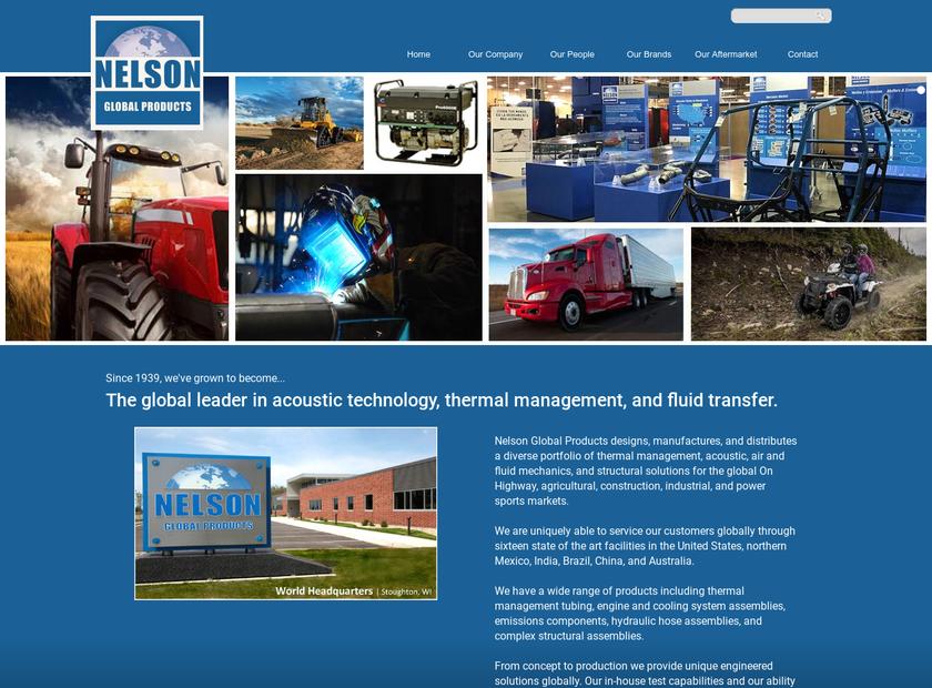 Nelson Global Products India Pvt Ltd homepage screenshot