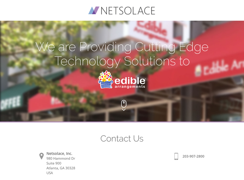 Netsolace Inc homepage screenshot