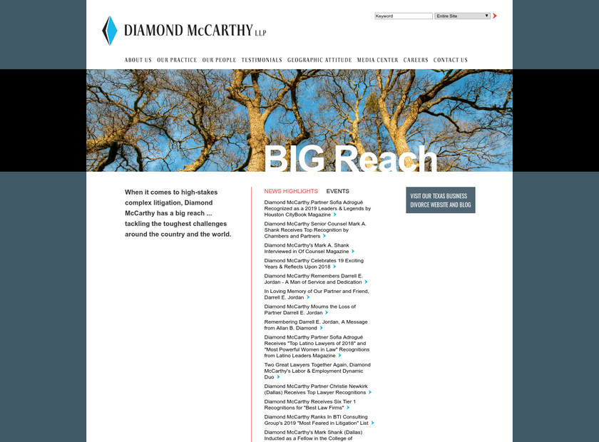 Diamond McCarthy LLP homepage screenshot