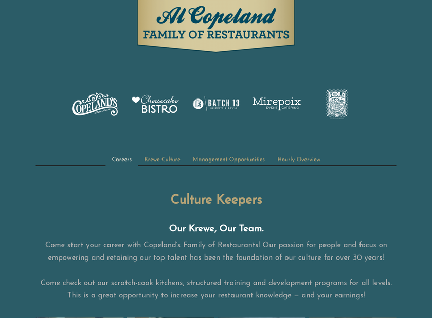 Al Copeland Investments Inc homepage screenshot